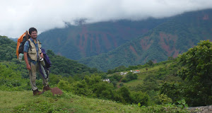 Selva de alta montaña