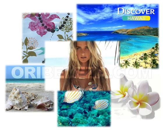 Descubra o Espírito do paraíso tropical - Descubra o Havai