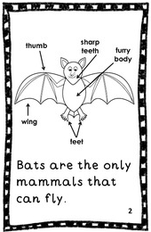 http://www.teacherspayteachers.com/Product/Bats-An-Emergent-Reader-946990