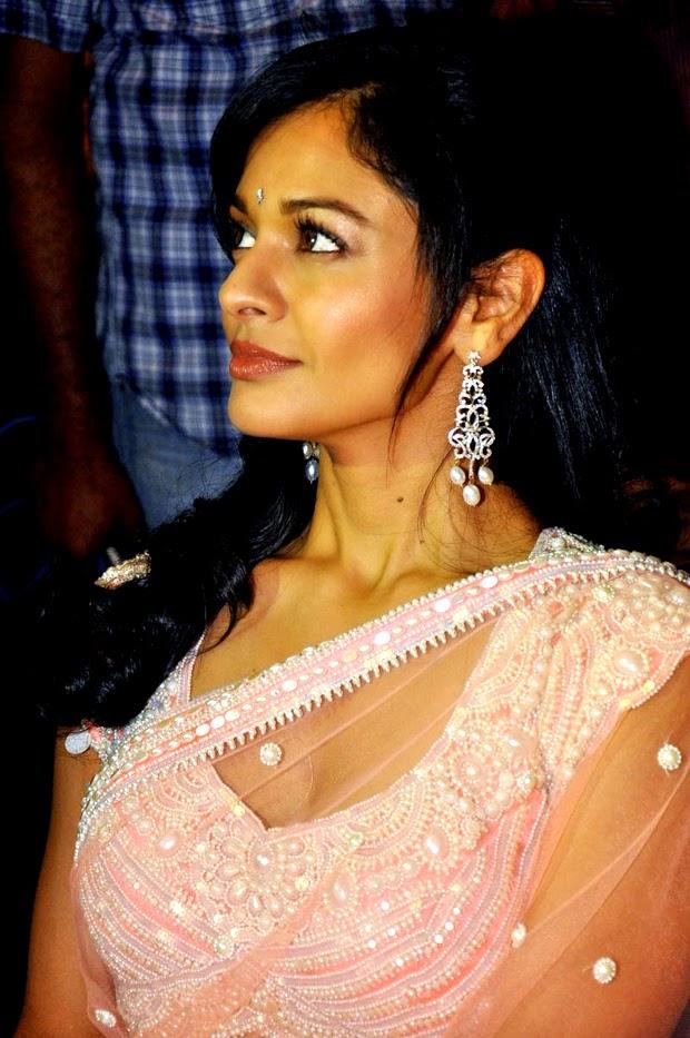 Pooja Kumar Actress In Saree