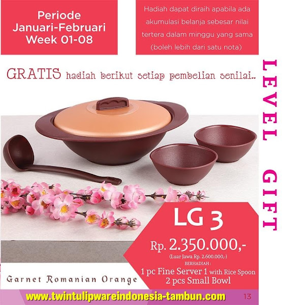 Level Gift 3 Twin Tulipware Februari 2016