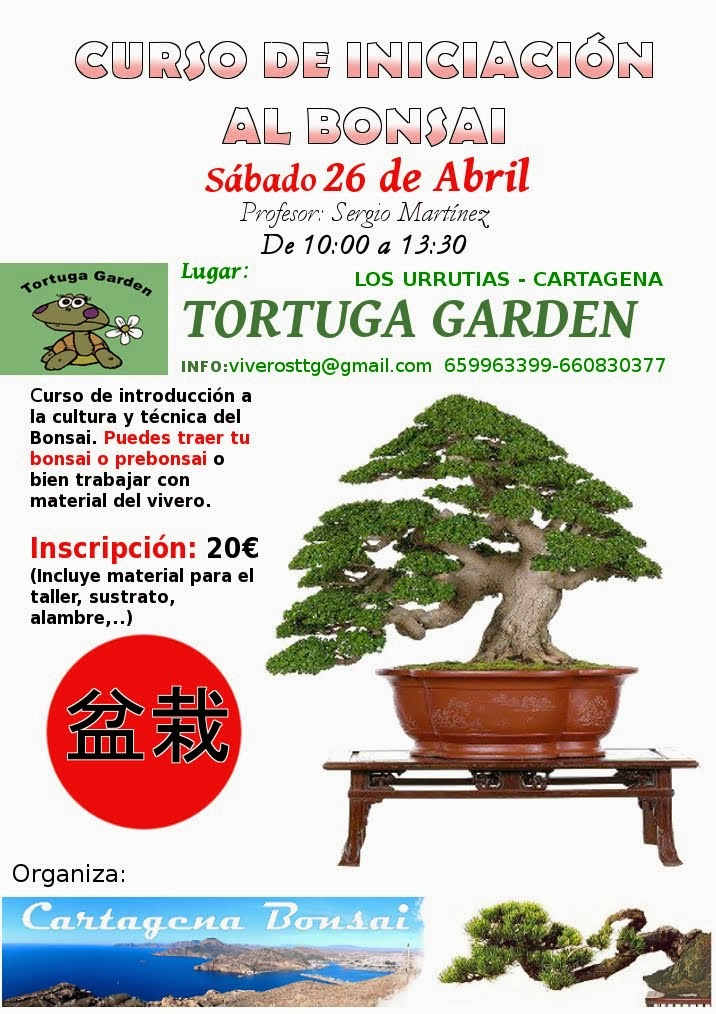 Curso Bonsai 26 abril