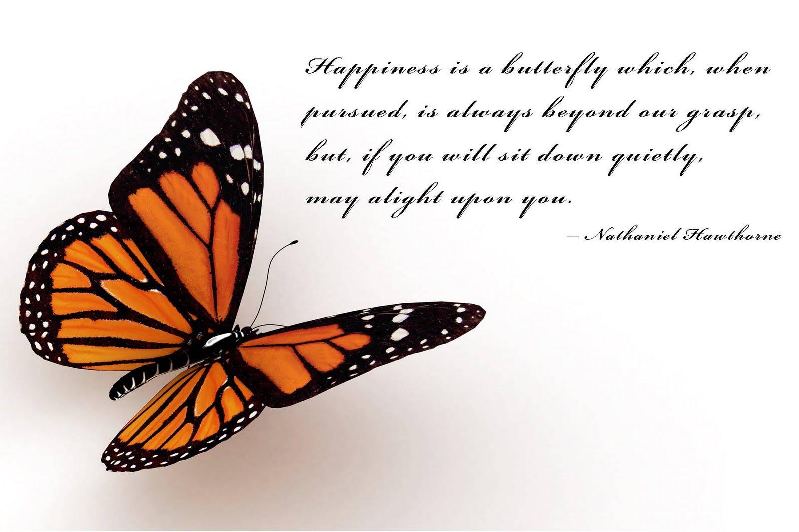 http://1.bp.blogspot.com/-cC7Nyt7tFzg/TW6I10jJvPI/AAAAAAAAAC8/ZjiPO4Y8YW8/s1600/butterfly+happiness.jpg