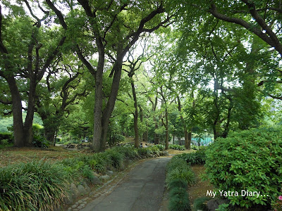 Pathways at Hibiya Garden - Tokyo, Japan