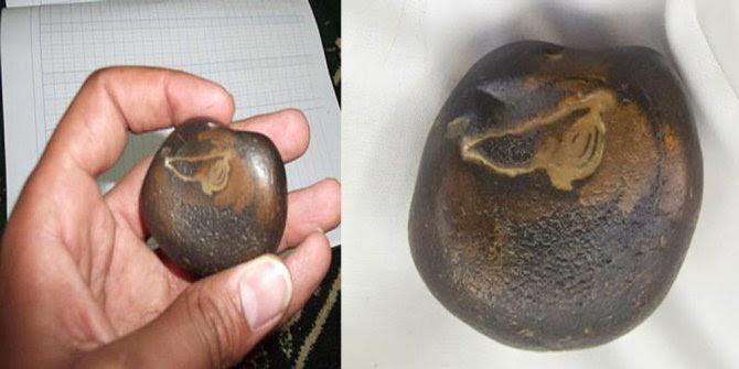 Batu Ababil ditemukan, Tidak untuk dijual