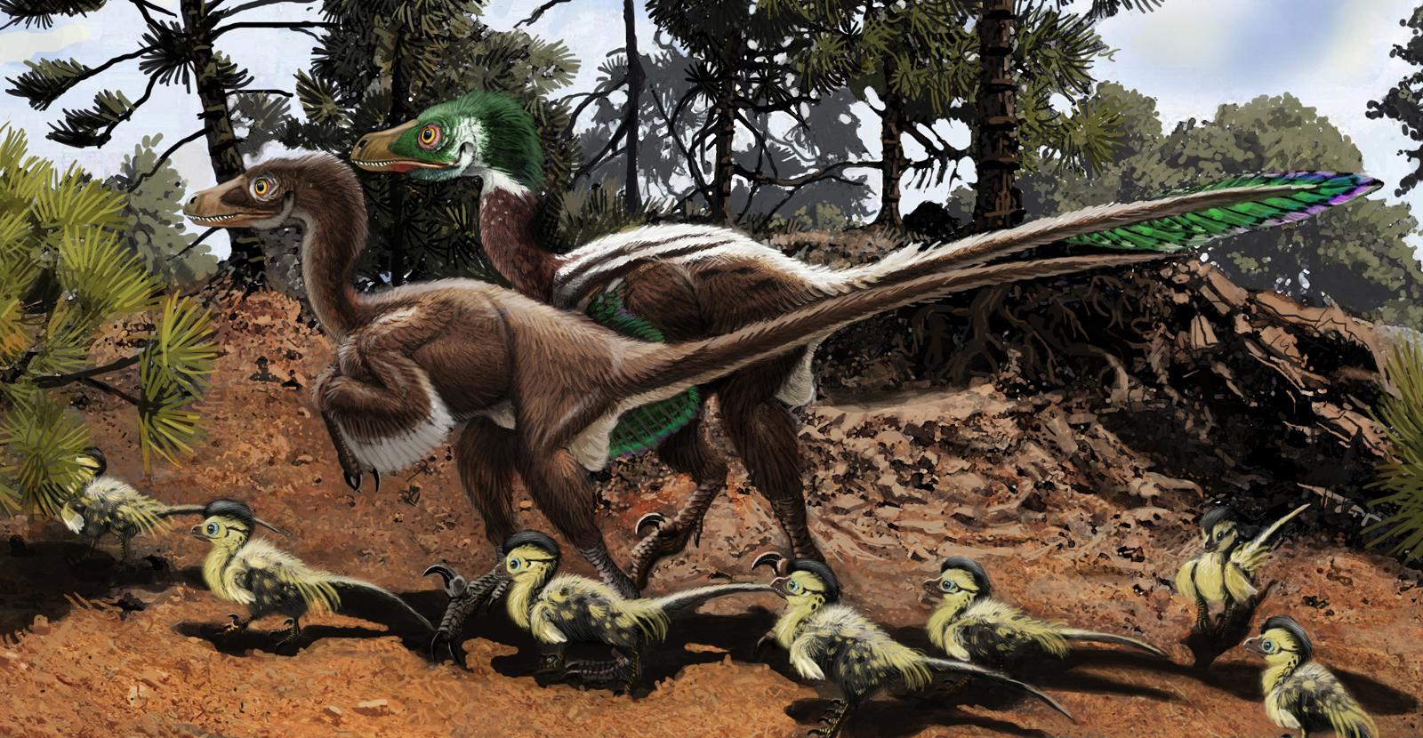 dromaeosaurus albertensis dromaeosaurus is the dinosaur which lent itsJurassic Fight Club Dromaeosaurus