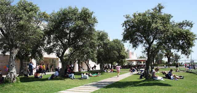 Fins de tarde musicais no Jardim das Oliveiras