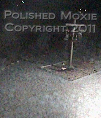 Picture at night of a startled skunk in a bird feeding area with his tail straight up in the air