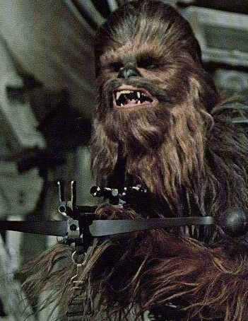 4.+Chewbacca.png