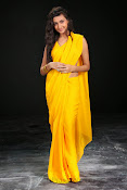 Neelam Upadhyay photos in Yellow saree from Action-thumbnail-17