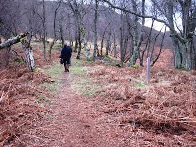 The trail along south Deeside from Cambus o'May