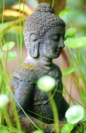 Corazon de Buddha