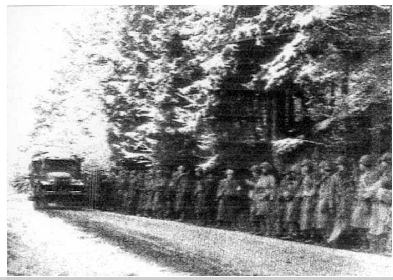 http://www.redetv.uol.com.br/jornalismo/portaljornalismo/Noticia.aspx?118,4,621037,200,Camera-com-fotos-da-2%b0-Guerra-Mundial-e-encontrada-em-antiga-trincheira