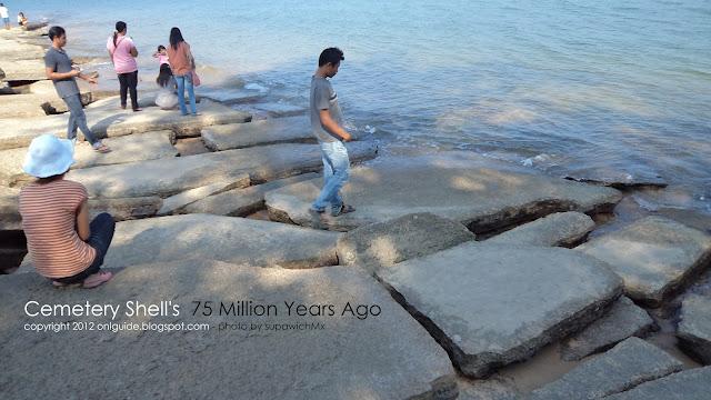 สุสานหอย 75 ล้านปี กระบี่