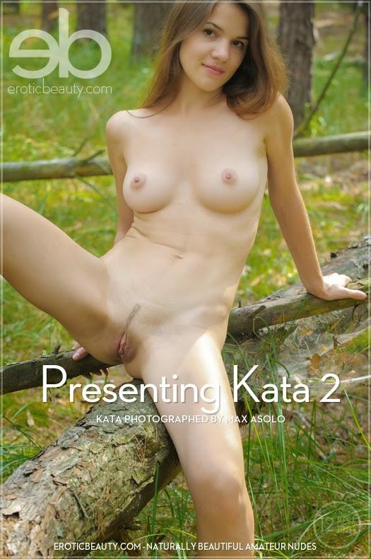 NlsdoticBeautl 2014-09-13 Kata - Presenting Kata 2 10020
