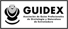 socio fundador de guidex