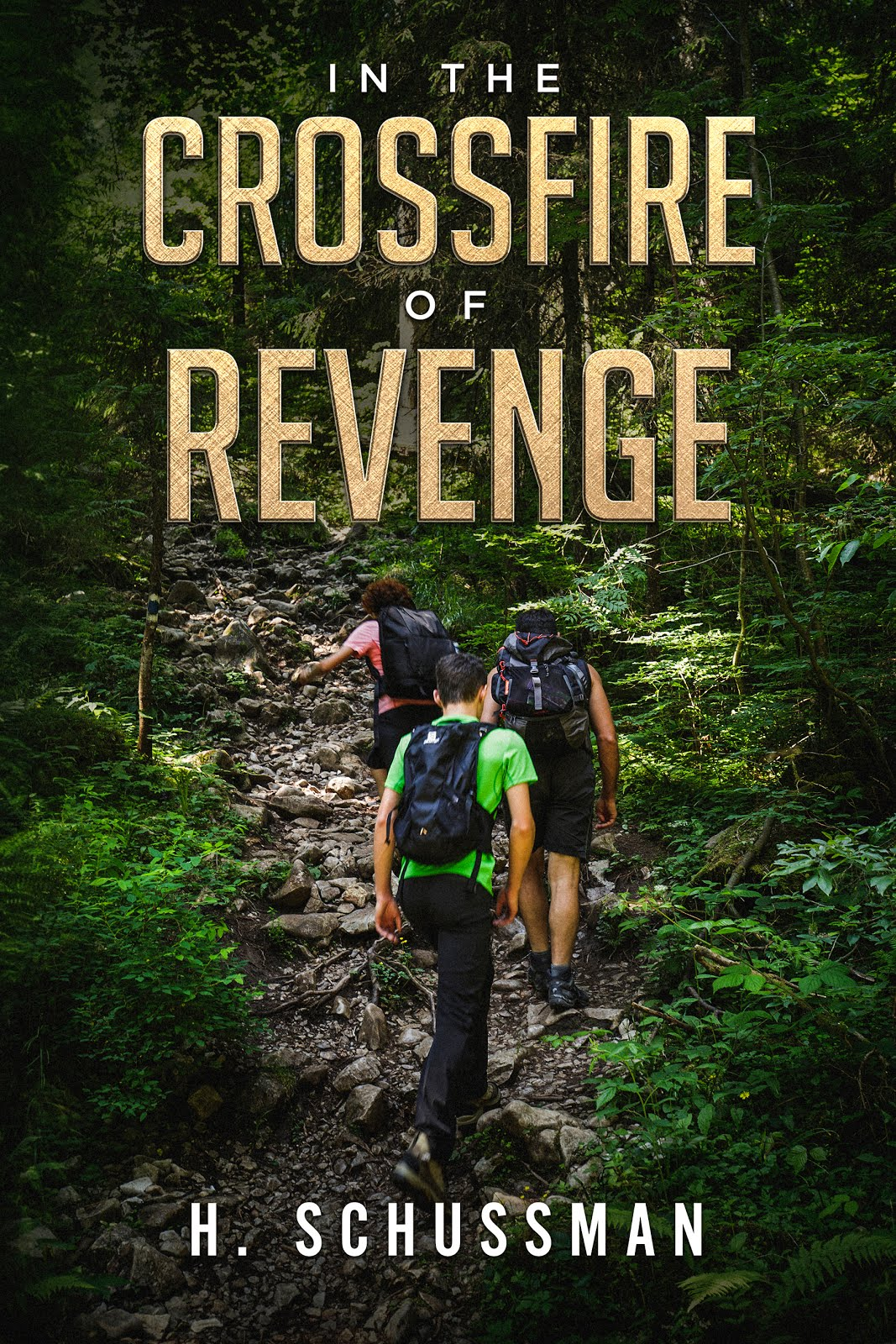 In the Crossfire of Revenge