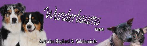 Wunderbaums Kennel
