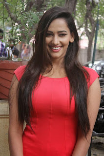 Actress Sanjana Singh  Pictures in Short Dress at Meagamann Movie Success Meet  24