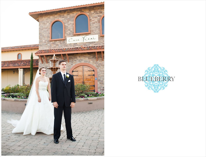 Livermore vineyard winery beautiful wedding photography outdoor casa realfountain