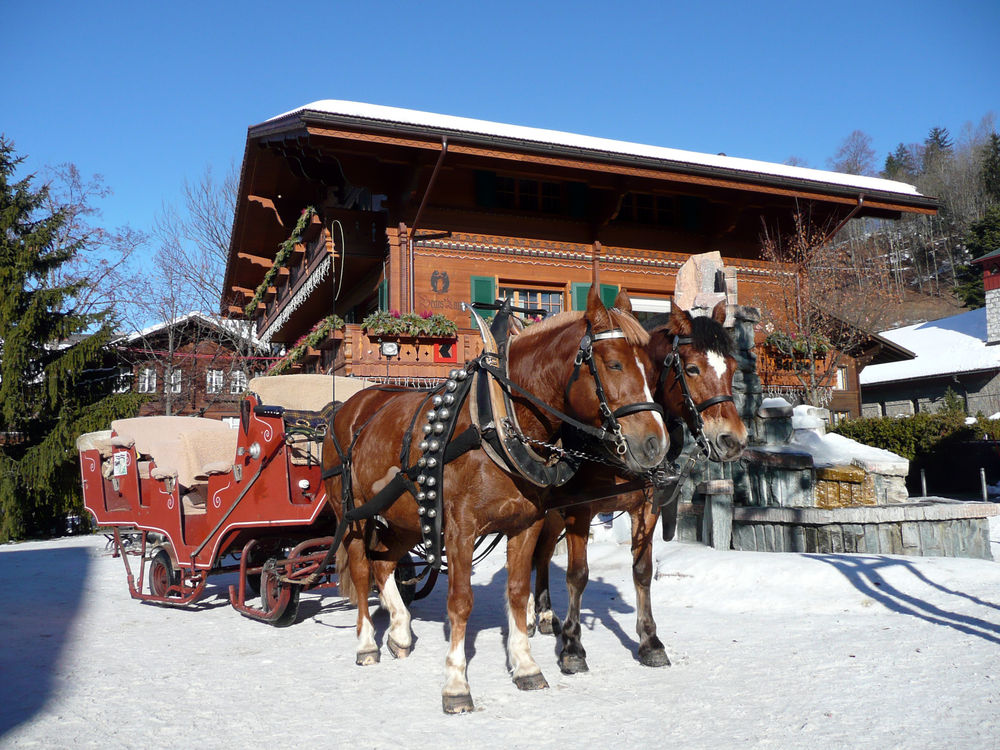 Dashing through the snow-covered Swiss countryside in your very own horse-drawn sleigh. Photo: Gstaad Saanenland Tourismus.