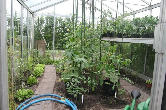 Huis tuin en keukenvertier een kleine tussenstand in de kas for Huis in de tuin