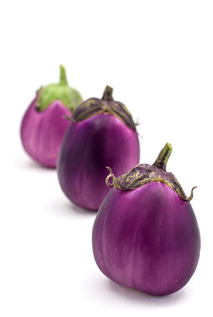 Eggplants in a row viola