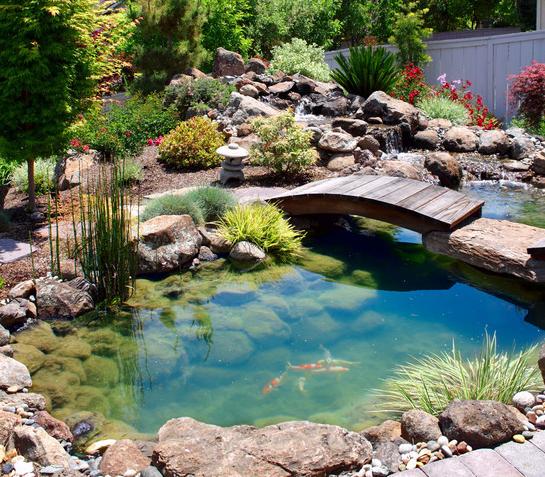 Amazing Garden Designs 20 amazing garden design ideas | brisk post