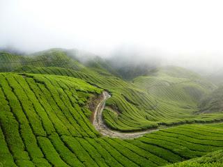 Koleksi tempat-tempat pelancongan di Malaysia