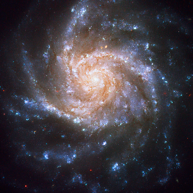 NGC 1376 shows active star formation through Hubble's eyes