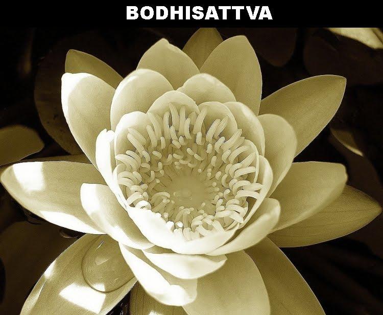 Bodhisattva da Terra