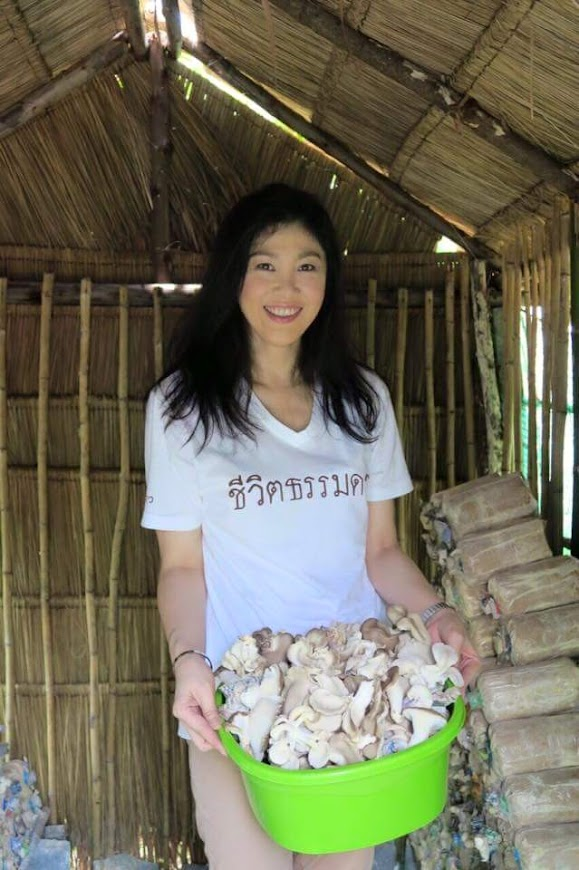 เมนู สู้ สู้ _ Yingluck Shinawatra