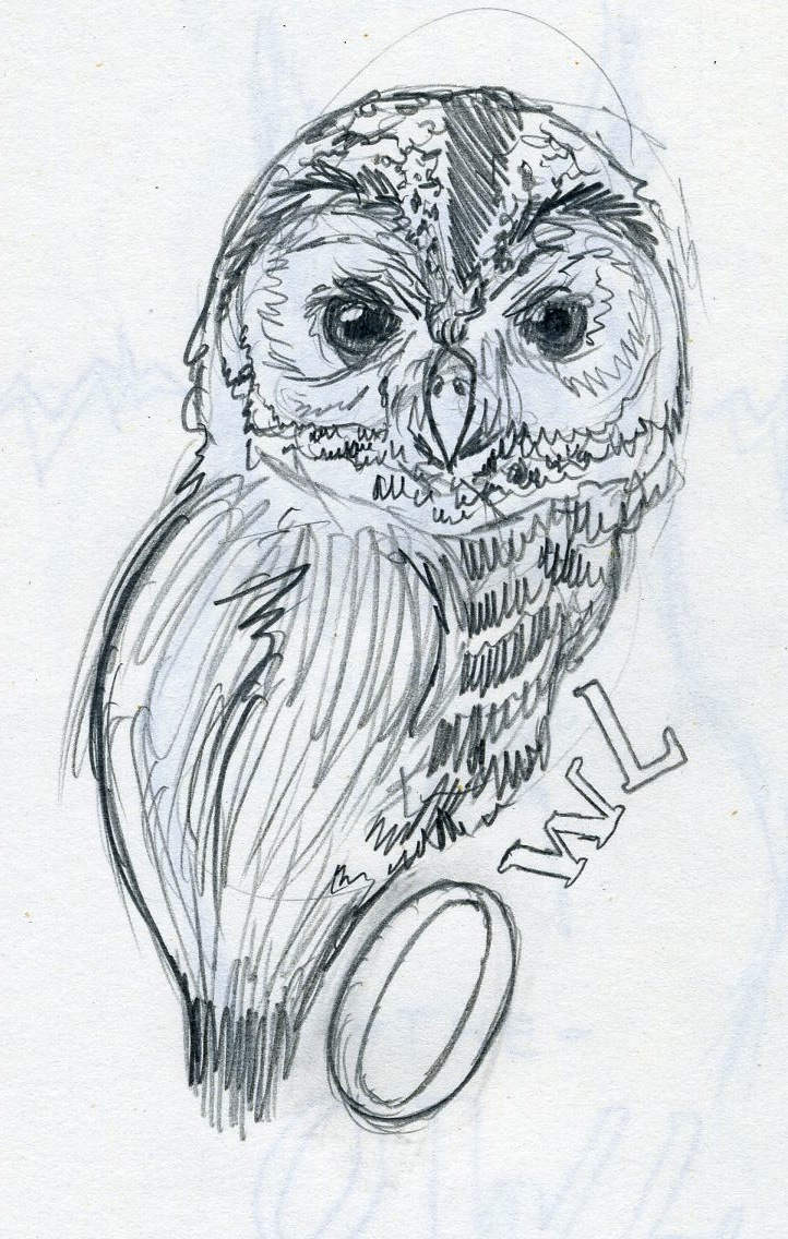 Flom Drawn One Cat Two Owls