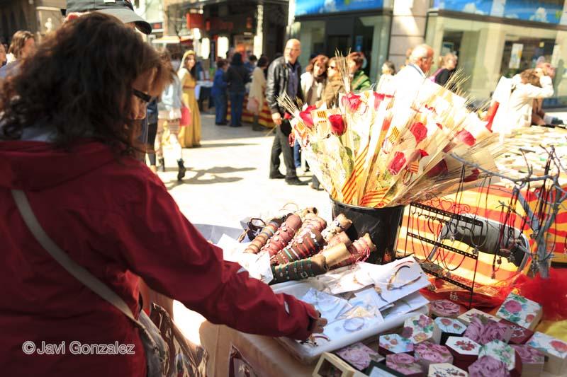 Diada Sant Jordi 2013, Lleida