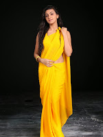 Neelam Upadhyay photos in Yellow saree from Action-cover-photo