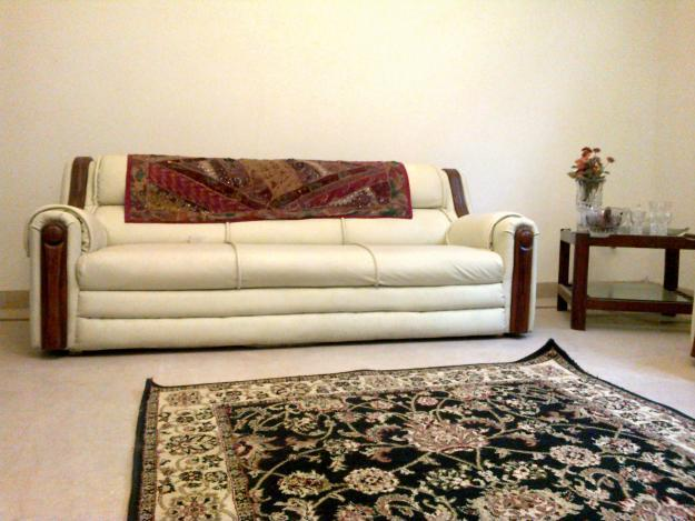 Pakistani Beautiful Sofa Designs.