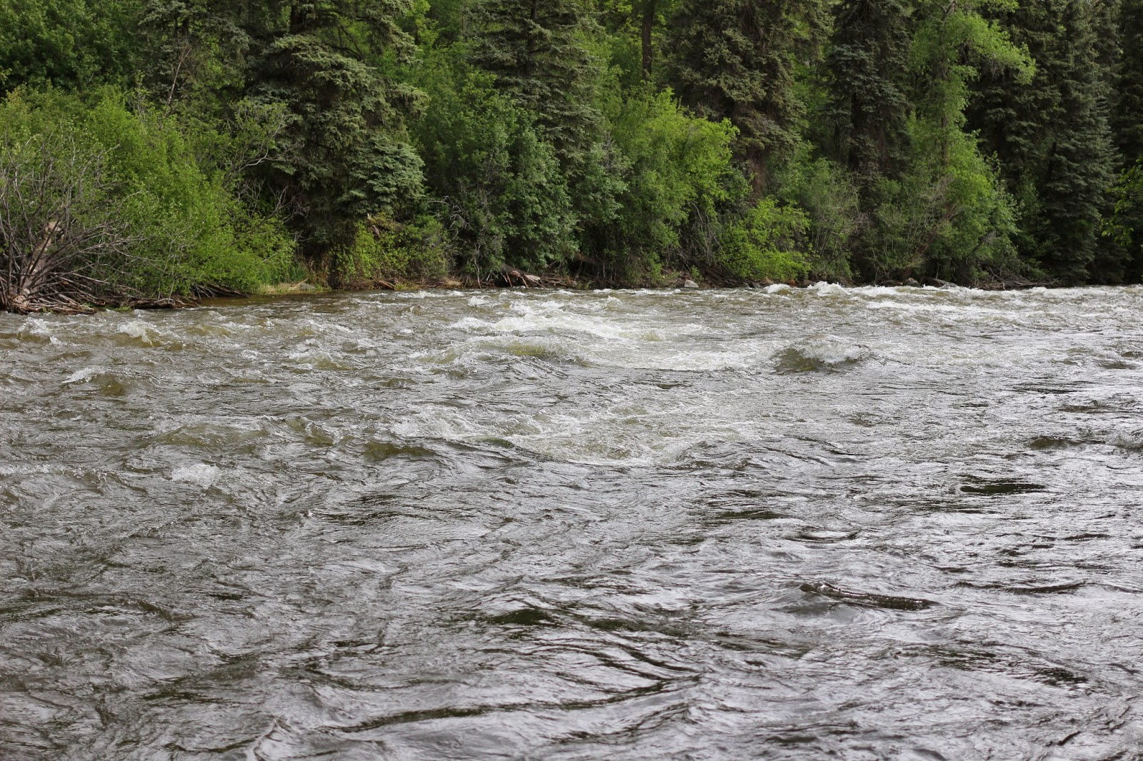 Roaring+Fork+High+Water+Photo+in+Colorado+with+Jay+Scott+Outdoors+2.JPG