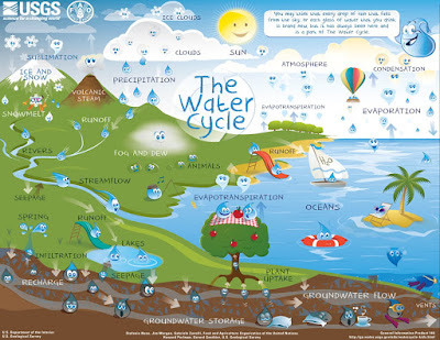 Image of the water cycle