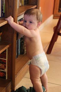 Learning To Stand and Balance