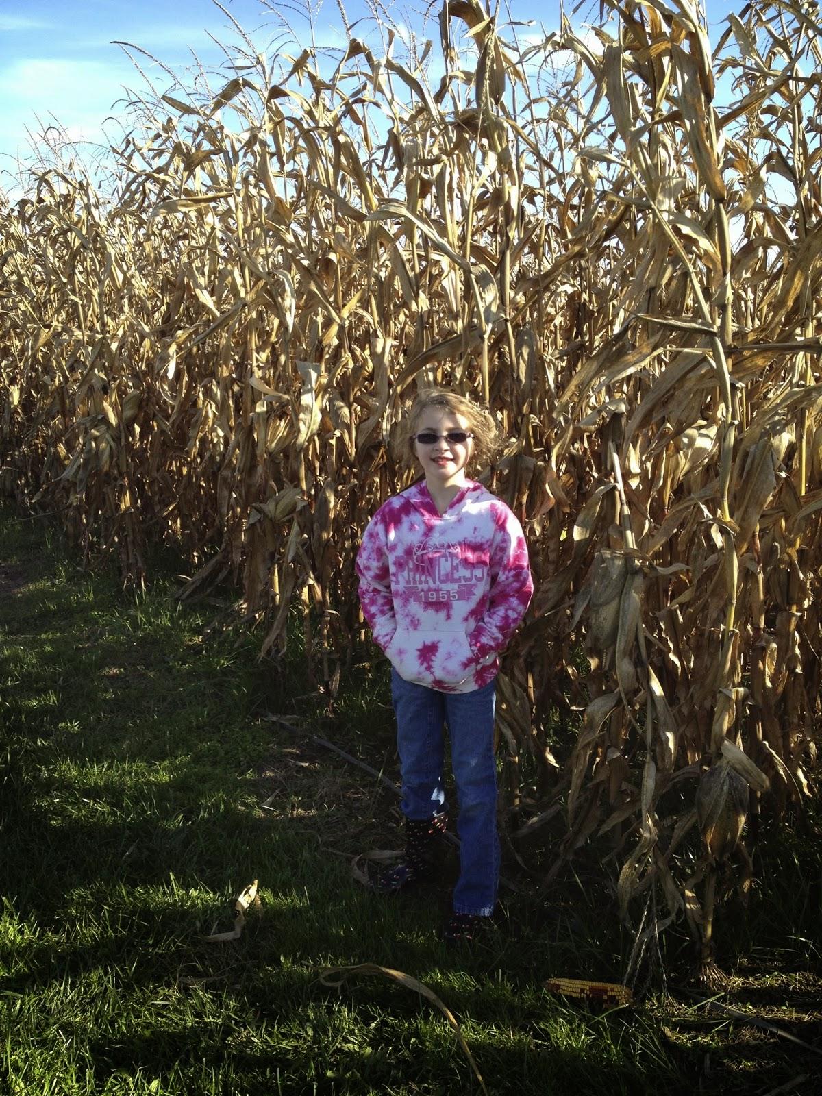 Corn Maze at Talladay Farms