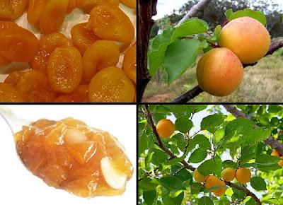 kayısı, kayısının faydaları, kayısı nelere iyi gelir, kayısının yararı nedir, apricot