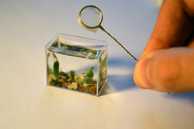 World's Smallest Aquarium With Fishes (7) 1