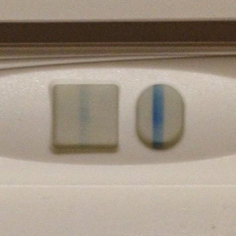 De Dagen Tot En Met De Zwangerschapstest Op Nod Een Broertje Of