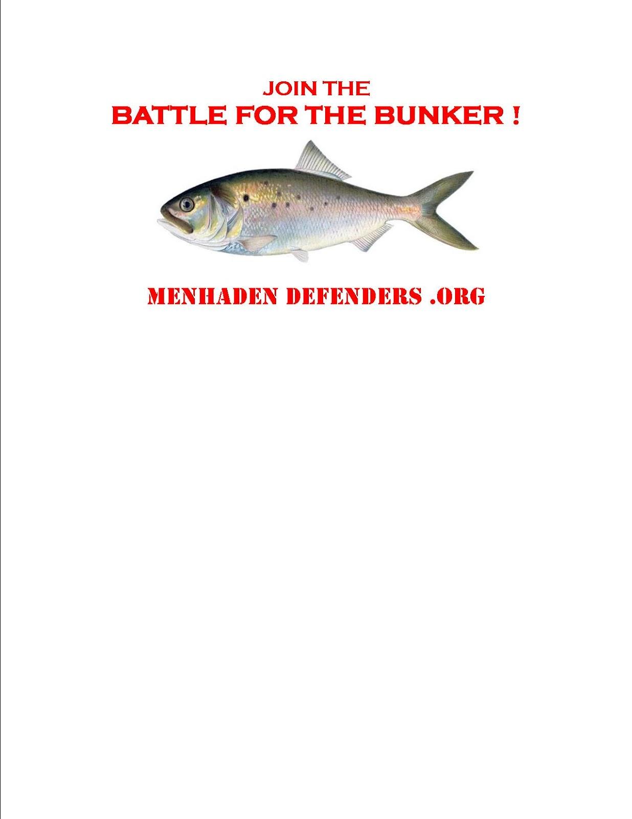 Menhaden defenders mini needs menhaden for Menhaden fish meal