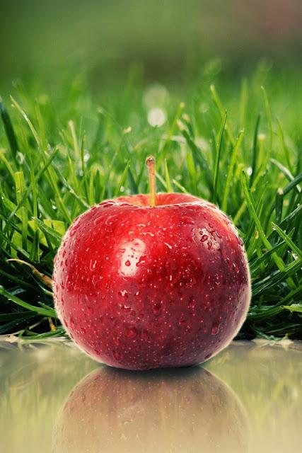 Crisp Apple iPhone Wallpaper By TipTechNews.com