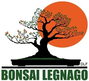 Associazione DLF Bonsai Legnago