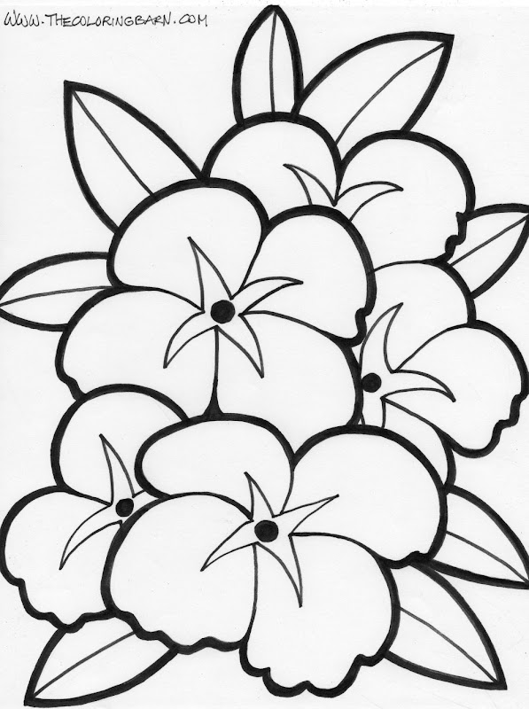 flower coloring sheets title=