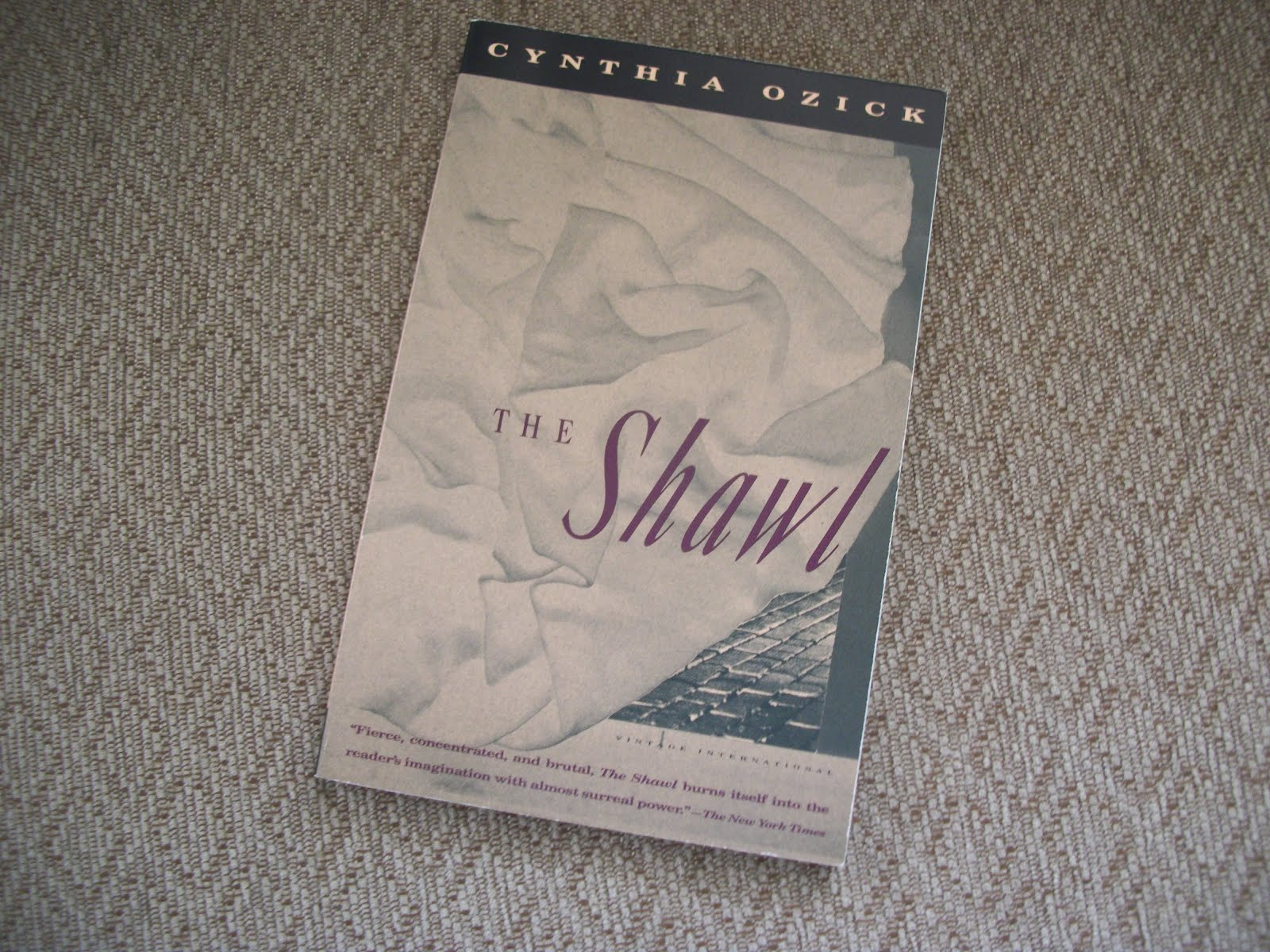 cynthia ozick s the shawl essay example