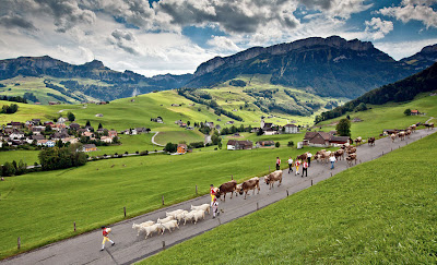 Camino a la granja en Suiza - Road to the farm in Switzerland