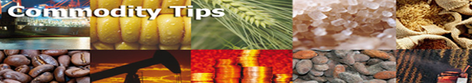 Chana ,Soyabean,Turmeric ,Dhaniya, Agri Commodity Tips, free agri calls, Free Agri Tips